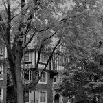 Panoramic of Neighborhood